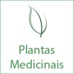 botao_plantas_medicinais