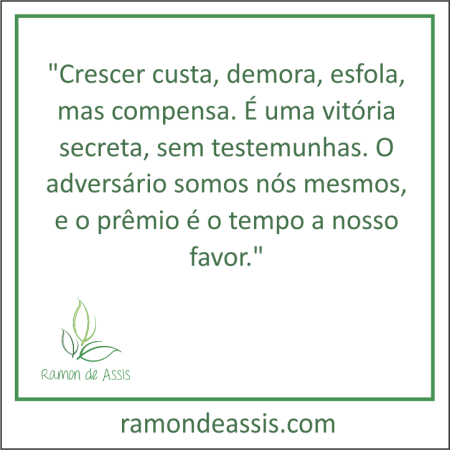 frase_do_mes_setembro_2015_ramon_de_assis
